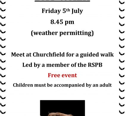 Bat Walk – A Free Event